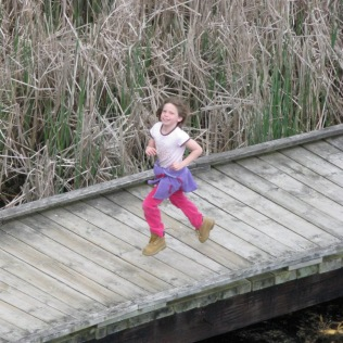 Mayia running at PeleeMarsh