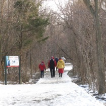 Winter walk at point pelee